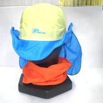 hat.201506b.JPG