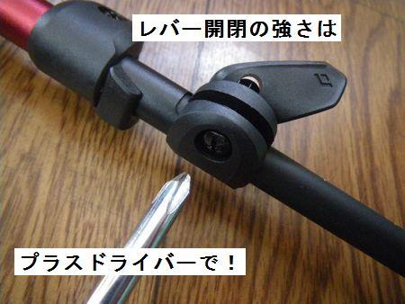 nmhh54.JPG