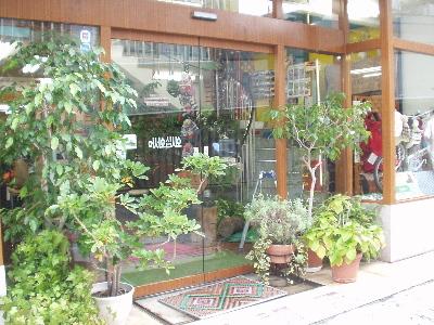 天王寺で70年間 愛山家の店ヨシミスポーツ