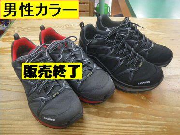 ローバー イノックス GT LO メンズ¥22000(税込)