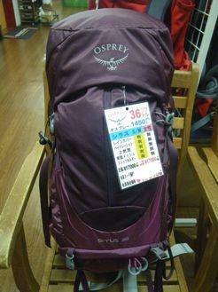 オスプレー シラス36 S/M レディース ¥19000+税