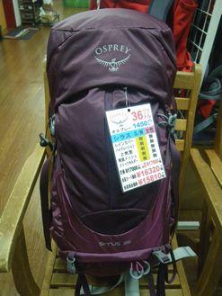 オスプレー シラス36 S/M レディース ¥17000+税